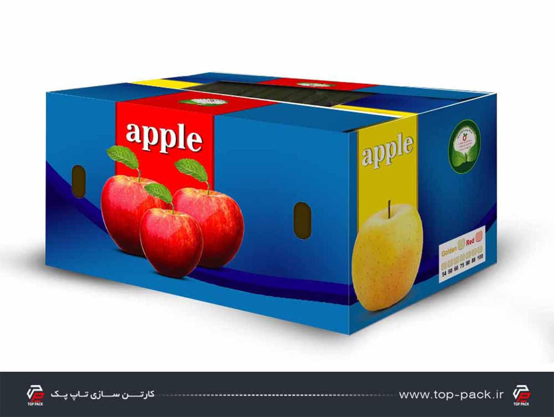 کارتن تلسکوپی سیب